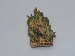 Pin's CANNE A SUCRE DE LA GUADELOUPE - Villes