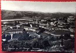 1955 TREGNAGO VERONA - PANORAMA - Altre Città