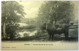 PRAIRIES DES BORDS DE L'YERRES - BRUNOY - Brunoy