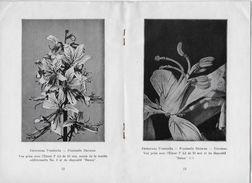 """Guide LEITZ1936 """"Accessoires Pour La Photographie De Petits Objets Avec L'appareil LEICA"""" (24 P.) Ernst LEITZ à WETZLAR - Supplies And Equipment"""