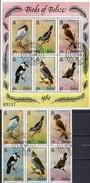 Tropic-Vögel 1980 Belize 493/8ZD+KB O 65€ Jabiru Meise Tyrann Faulvogel Adler Tungare Fauna WWF Ss Bird Bf Honduras - Belize (1973-...)