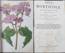 REVUE HORTICOLE 1870 ET 1871 Journal D'horticulture Pratique, Fondé En 1829 Par Les Auteurs Du Bon Jardinier - Boeken, Tijdschriften, Stripverhalen