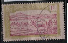 CAMEROUN                N°  YVERT    106  (1)  OBLITERE       ( O   2/01 ) - Oblitérés