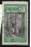 CAMEROUN                N°  YVERT    114  ( 2 )    OBLITERE       ( O   2/01 ) - Cameroun (1915-1959)