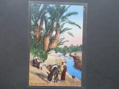 Türkei 1917 Marke Mit 2 Aufdrucken! Nach Sarajevo KuK. Au Bord Du Lac. Esel. Einheimische! Lehnert & Landrock, Tunis. - Türkei