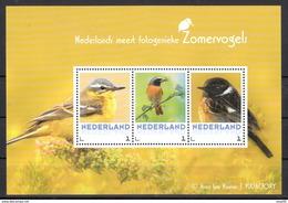 Nederland 2017 Vogels, Birds, Zomervogels; Gele Kwikstaart, :wagtail, Roodstaart, Red Tail, Tapuit,  Foto A. Ten Hoeve - Periode 2013-... (Willem-Alexander)