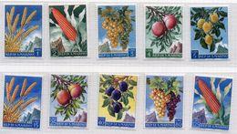 1958 San Marino-Frutta E Prodotti INTEGRI MNH** - Ongebruikt