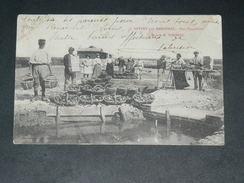 """ARVERT / ARDT LA TREMBLADE / MARENNES   1905 /  METIER OSTREICULTEUR PARC EXPEDITION """" MAISON TORSEAU """"   EDIT - Altri Comuni"""