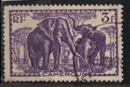 CAMEROUN                N°  YVERT    188   ( 3 )  OBLITERE       ( O   2/02 ) - Cameroun (1915-1959)
