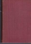ZOGOIBI. ENRIQUE LARRETA. 1926, 377 PAG. JUAN ROLDAN Y CIA EDITORES - BLEUP - Klassiekers