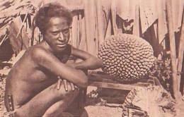Oceanie       3        Type D'indigène - Postcards