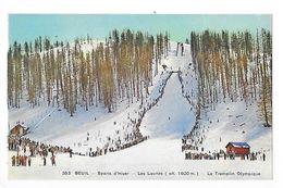 BEUIL  (cpa 06)  Sports D'hiver, Les Launes, Le Tremplin Olympique -   - L 1 - France