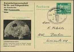 7980 FINSTERWALDE 1/ Meldet/ Bodenfunde!.. 1982 (24.5.) SSt = Faustkeil Auf Amtl. P 10 Pf. Neptunbrunnen, Grün + Amtl. Z - Stamps