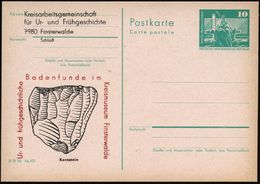 7980 Finsterwalde 1982 Amtl. P 10 Pf. Neptunbrunnen + Amtl. Zudruck: Ur- U. Frühgeschichliche Bodenfunde.. Krenstein (Fa - Stamps