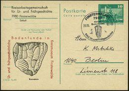 7980 FINSTERWALDE 1/ Meldet/ Bodenfunde!... 1982 (28.5.) SSt = Faustkeil Auf Motivgleicher Amtl. P 10 Pf. Neptunbrunnen, - Stamps