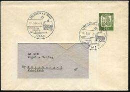 7141 STEINHEIM A.d.MURR/ ..Homo Steinheimensis 1964 (10.9.) HWSt (Rathaus, Sonne) Klar Gest. Inl.-Bf. (Bo.3 Erstjahr) - Stamps