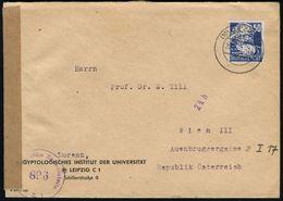 (10b) LEIPZIG C 13 1951 (20.2.) 2K-Steg Auf Vordr.-Bf.: AEGYPTOLOGISCHES INSTITUT DER UNIVERSITÄT , EF 50 Pf. Marx + Vio - Stamps