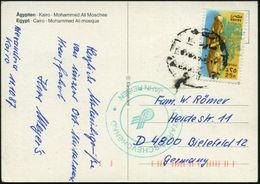 """ÄGYPTEN 1987 25 P. """"Echnaton"""" (Amenophis IV.), EF = Skulptur Aus Theben , Bedarfs- Übersee-Kt.  (Mi.982 EF) - Stamps"""