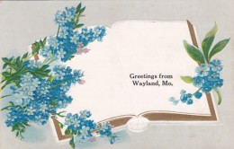Misouri Greetings From Wayland - Postcards