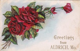 Misouri Greetings From Aldige Red Roses 1910 - Postcards