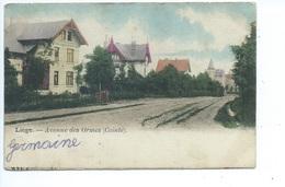Liège Avenue Des Ormes ( Cointe ) - Liege