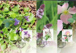 CROATIA - HRVATSKA  - MEDICINAL  FLOWERS - 3 MC - 2004 - Piante Medicinali