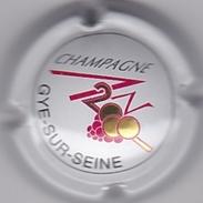 GYE-SUR-SEINE SUR GENERIQUE AN 2000 N°613 - Champagne