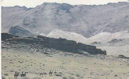 Mongolia - Landscape - Mongolia