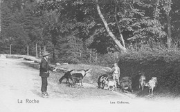 La Roche.  Les Chèvres - La-Roche-en-Ardenne