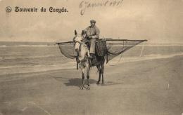 BELGIQUE - FLANDRE OCCIDENTALE - KOKSIJDE - COXYDE - Souvenir De ... - Koksijde