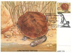 (925) Australia Early Maxicard - Native Animals (6 Cards) 1982 - Cartoline Maximum