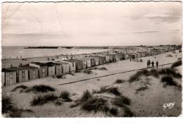 3ΨM 83. CALAIS - LA PLAGE AU FOND LES JETEES - Calais