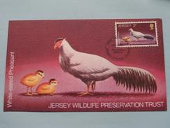 WILDLIFE White-eared Pheasant ( Philatelic) 1971 ( Zie Foto ) ! - Jersey