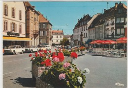 HAGUENEAU ( 67 )  En Fleurs -  Dentelée, Glacée - 105x150 - Haguenau