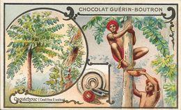 CHROMO CHOCOLAT  GUERIN BOUTRON -   CAOUTCHOUC   -  PARIS - Guerin Boutron