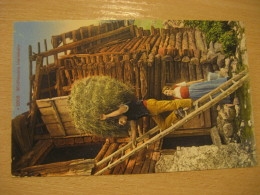 Wildheuers Heimkehr Agriculture Post Card Switzerland - Autres