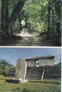 AMERIQUE - GUATEMALA - Ruinas Mayas De El Ceibal - Guatemala