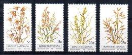 Bophuthatswana - 1981 - Indigenous Grasses (1st Series) - MNH - Bophuthatswana