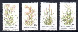 Bophuthatswana - 1984 - Indigenous Grasses (2nd Series) - MNH - Bophuthatswana