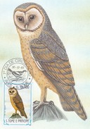 1983 S TOME E PRINCIPE MAXIMUN CARD WITH OWL STAMP ANF FIRST DAY CANCELLATION BIRD - Hiboux & Chouettes