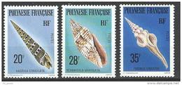 """Polynésie YT 142 à 144 """" Coquillages """" 1979 Neuf** - Französisch-Polynesien"""