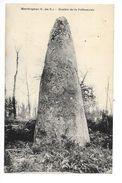 MERDRIGNAC  (cpa 22)   Menhir De La Pellionnais -  - L 1 - Autres Communes