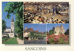 Sancoins L'Eglise-Les Grivelles-L'Hôtel Le Commerce-Le Donjon De Jouy  Cpsm Format 10-15 - Sancoins