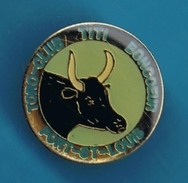 1 PIN'S //  ** TORO-CLUB ** TITI BONCOEUR ** PORT-St-LOUIS ** . (Ø 2,2 Cm) - Bullfight - Corrida