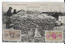 SPM - 1923 - SUPERBE CARTE ANIMEE D'un DOUANIER (VOIR DOS) De ST PIERRE => TCHECOSLOVAQUIE - St.Pierre & Miquelon