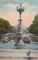 Illinois Chicago Fountain In Washington Park 1916