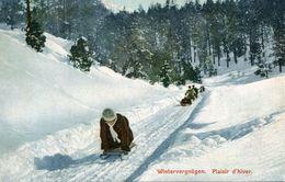 LUGE - Sports D'hiver