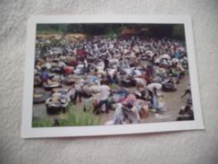 ABIDJAN ..LES FANICOS DU BANCO ... ...PHOTO M. ASCANI - Côte-d'Ivoire