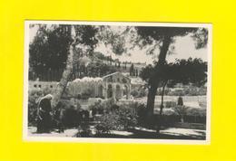 POSTCARD & Stamp KINGDOM OF THE JORDAN  Year 1952 CHURCH & GARDEN OF GETHSEMANE - Postcards