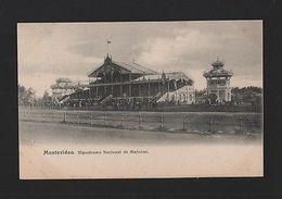 Year 1900 MONTEVIDEO HIPPODROME HIPODROMO MAROÑAS URUGUAY Horse Horses Z1 Xx - Postcards